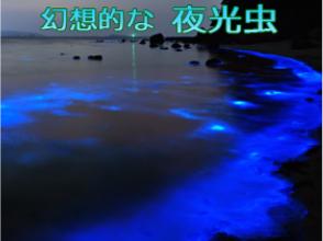 プランの魅力 梦幻般的夜光藻 の画像