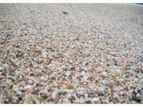 プランの魅力 琴引浜の浜辺の様子。季節によっては、クラフト体験の材料にぴったりの可愛い貝がらがいっぱい! の画像