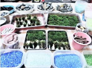 プランの魅力 メインの苔は国内天然産です。 の画像