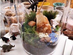 プランの魅力 自然な苔風景(テラリウム)作品の作れます♪ の画像