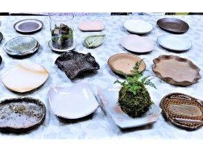 プランの魅力 厳選産地製や(いろは)特製、苔玉置き陶器(器)を多数種類ご用意致しております の画像