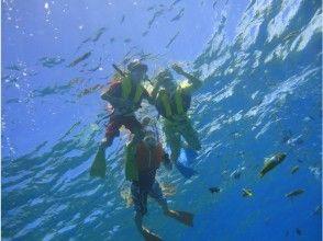 プランの魅力 如果你在水下看... の画像