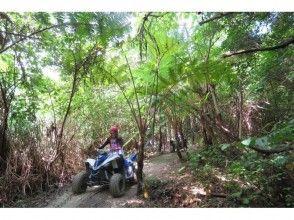 【沖縄・名護】4輪バギーでやんばるの森を気持ちよく走る!散策タイムもあり[バギーライドツアー]の魅力の説明画像