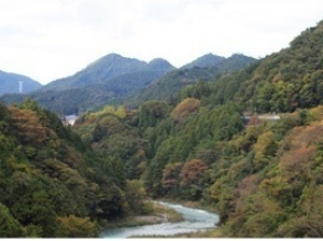 [Tokyo Okutama] clear stream and a spray of water hit the heart! Charm of description image of rafting experience (downstream half-day course)