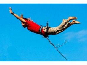 プランの魅力 Bridge swing の画像