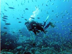 プランの魅力 蒼い海 の画像