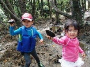 【沖縄・石垣島】カヌー&シュノーケリング幻想的な青の洞窟を楽しむの魅力の説明画像