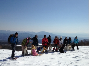 [Yamanashi Yatsugatake] dogs ♪ with and snowshoe hiking ※ lunch box of the charm of the description image