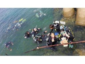 プランの魅力 この海域を知り尽くしたインストラクターがオススメのダイビングポイントへご案内します の画像