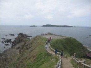 プランの魅力 礼文島の三大岬を満喫! の画像