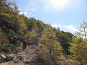 プランの魅力 5 hour trekking の画像