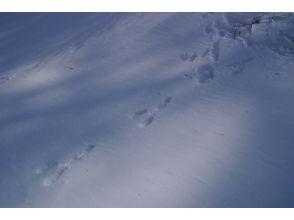 プランの魅力 Guide guide the winter mountain の画像