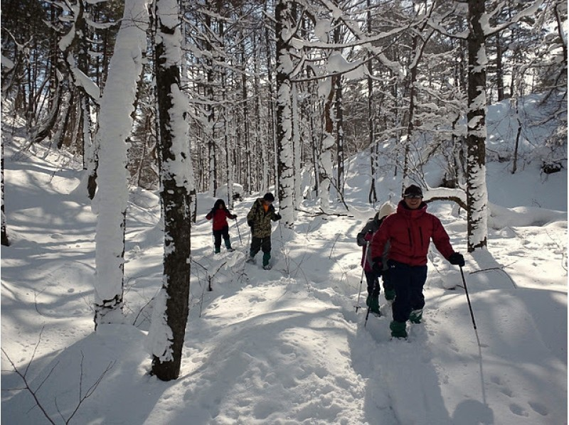 Fukushima Back Bandai Snowshoe Tour