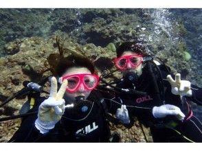 【沖縄・宮古島】ボート体験ダイビング(2ダイブ)・シュノーケリングフリーの魅力の説明画像