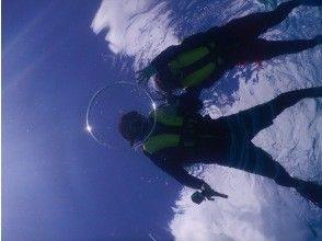 プランの魅力 바다 거북과 함께 사진 촬영! の画像