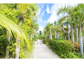 プランの魅力 汤布岛 の画像