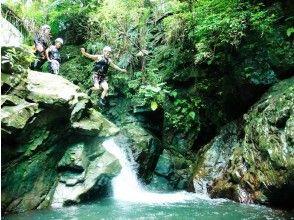プランの魅力 Waterfall jump の画像