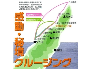 "[Hokkaido · Shiretoko] departs at 8 o'clock! Refreshing morning wildlife exploration cruise aboard boat ☆ Brown High probability Explanation image of ♪ charm to ""Rusa bay"""