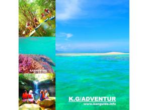 プランの魅力 マングローブSUP&バラス島シュノーケリング の画像