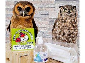 プランの魅力 GO TO Travel Tokyo Regional Coupon の画像
