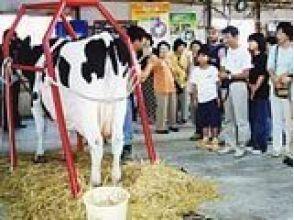 【北海道・摩周湖近く】半日牧場体験★酪農教育ファームプログラム(昼食付き)の魅力の説明画像