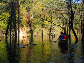 【青森県西目屋村】白神山地に囲まれて、ゆったり水上散策・カナディアンカヌーの魅力の説明画像