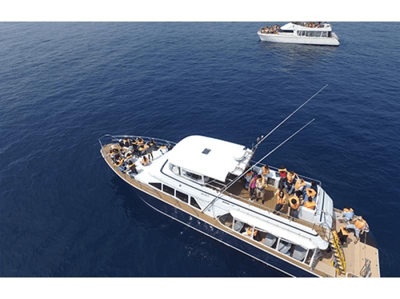 プランの魅力 当社、自慢の船 の画像