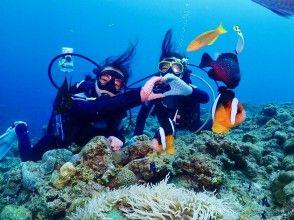 プランの魅力 這是初學者的潛水商店,所以對於初學者和不會游泳的人來說都是安全的♪ の画像