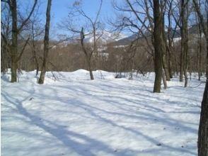 プランの魅力 フカフカの雪を歩く! の画像