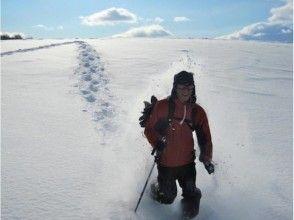 プランの魅力 An extraordinary world walking in the snowy fields of powder snow の画像