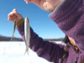 【北海道・網走】冬プログラム一番人気!網走湖ワカサギ釣り体験~釣った魚はその場で天ぷらに~の魅力の説明画像