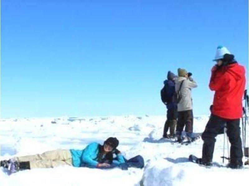 プランの魅力 ガイドの指示のもと、打ち上げられた流氷の上に。 の画像