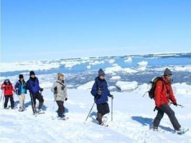 プランの魅力 流氷の訪れる海岸線を歩きます の画像