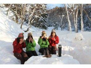 プランの魅力 我会在围绕雪桌时与导游聊天 の画像