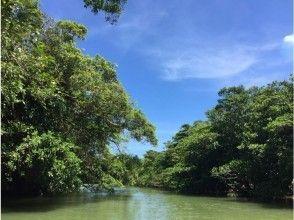 プランの魅力 Miyara River designated as a national natural monument ♪ の画像