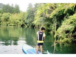 プランの魅力 川の中を泳ぐ魚に夢中! の画像