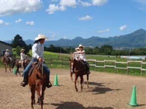 [Riding in Hokkaido Niseko] attractive description image of horse trekking (60 minutes)