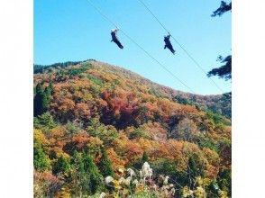 プランの魅力 四季折々の風景を眺めながら大滑空 の画像