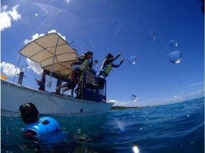 プランの魅力 全コースボート開催 の画像