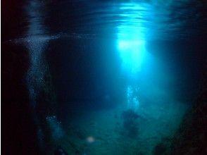 プランの魅力 洞窟内水中 の画像
