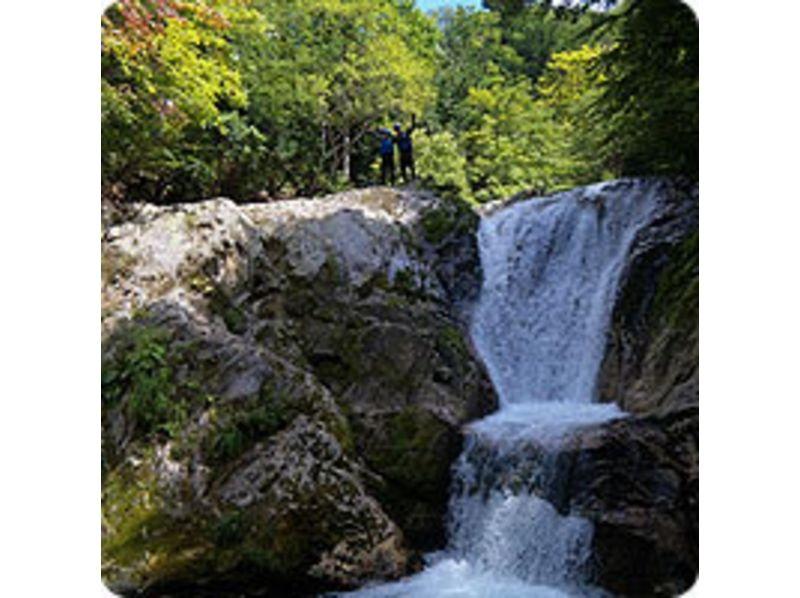 プランの魅力 森林浴と滝のマイナスイオン効果 の画像