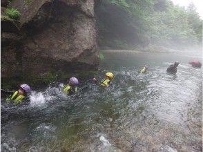 プランの魅力 Pukapuka in the natural pool ♪ の画像