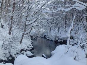 【福島・裏磐梯】雪原の中に輝く青!神秘の五色沼スノーシュー体験(午前/午後)の魅力の説明画像