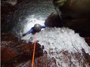 プランの魅力 Shower climbing の画像