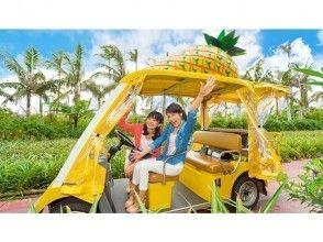プランの魅力 名護菠蘿園:約50分鐘 の画像
