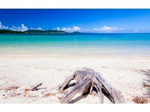 プランの魅力 ホテル目の前の天然ビーチ の画像