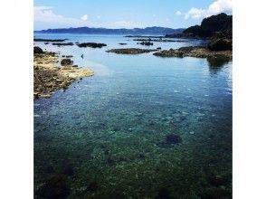 プランの魅力 小学1年生から楽しめる海 の画像