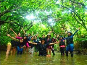 プランの魅力 Play all over Iriomote Island in one day! の画像