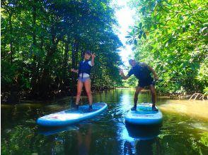 プランの魅力 Landing on Barasu Island の画像