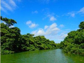 プランの魅力 田野是國家指定的自然古蹟! の画像